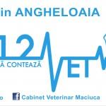 Dr. Valentin ANGHELOAIA 112vet